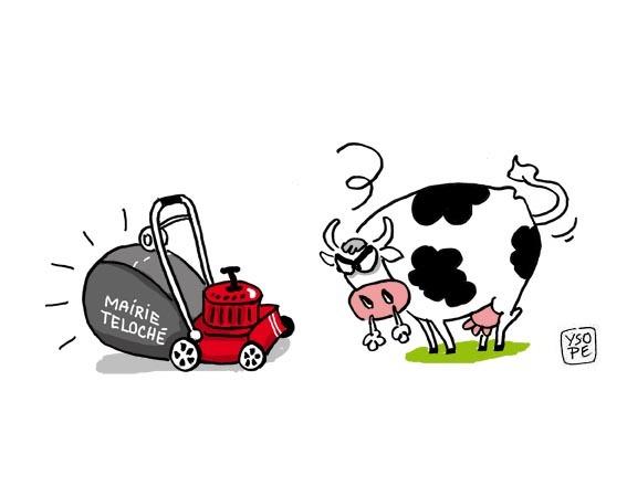 Vaches sacrees humour - Vache dessin humour ...