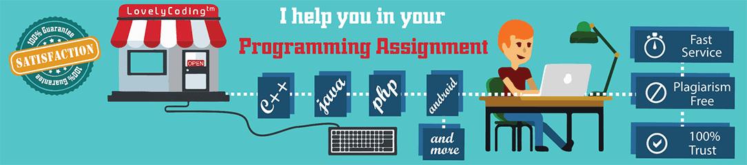 Programming Assignment Help