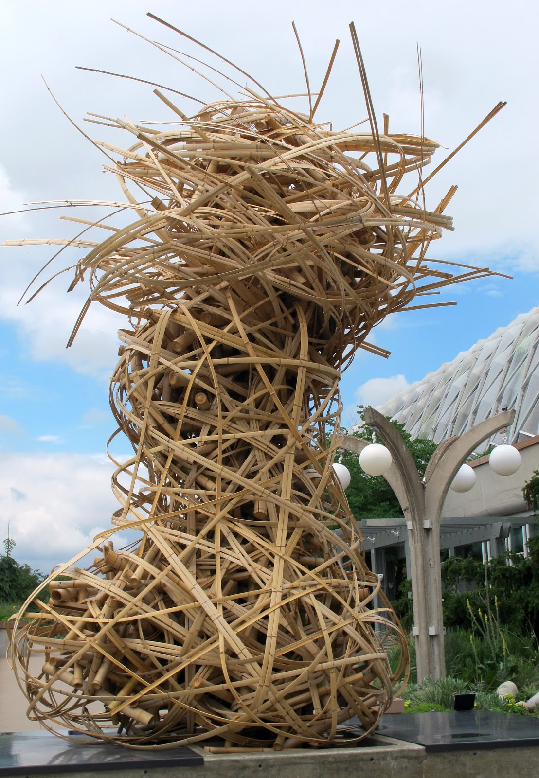 Robin Talks, Cooks and Travels: An explosion of Bamboo at the Denver ...