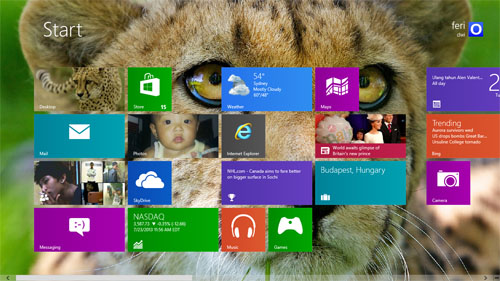 Cheetahs Animals Theme For Windows 7 And 8