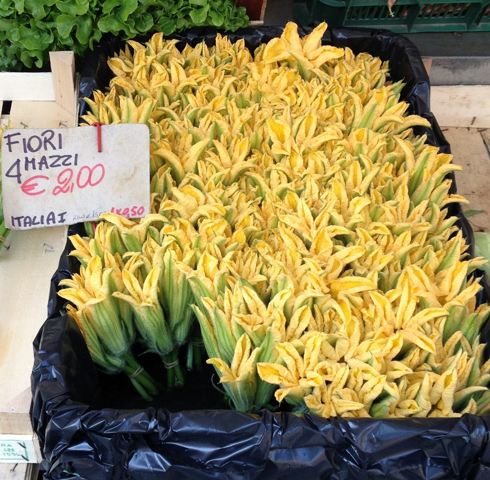 garden at heart Zucchini flowers from Italy