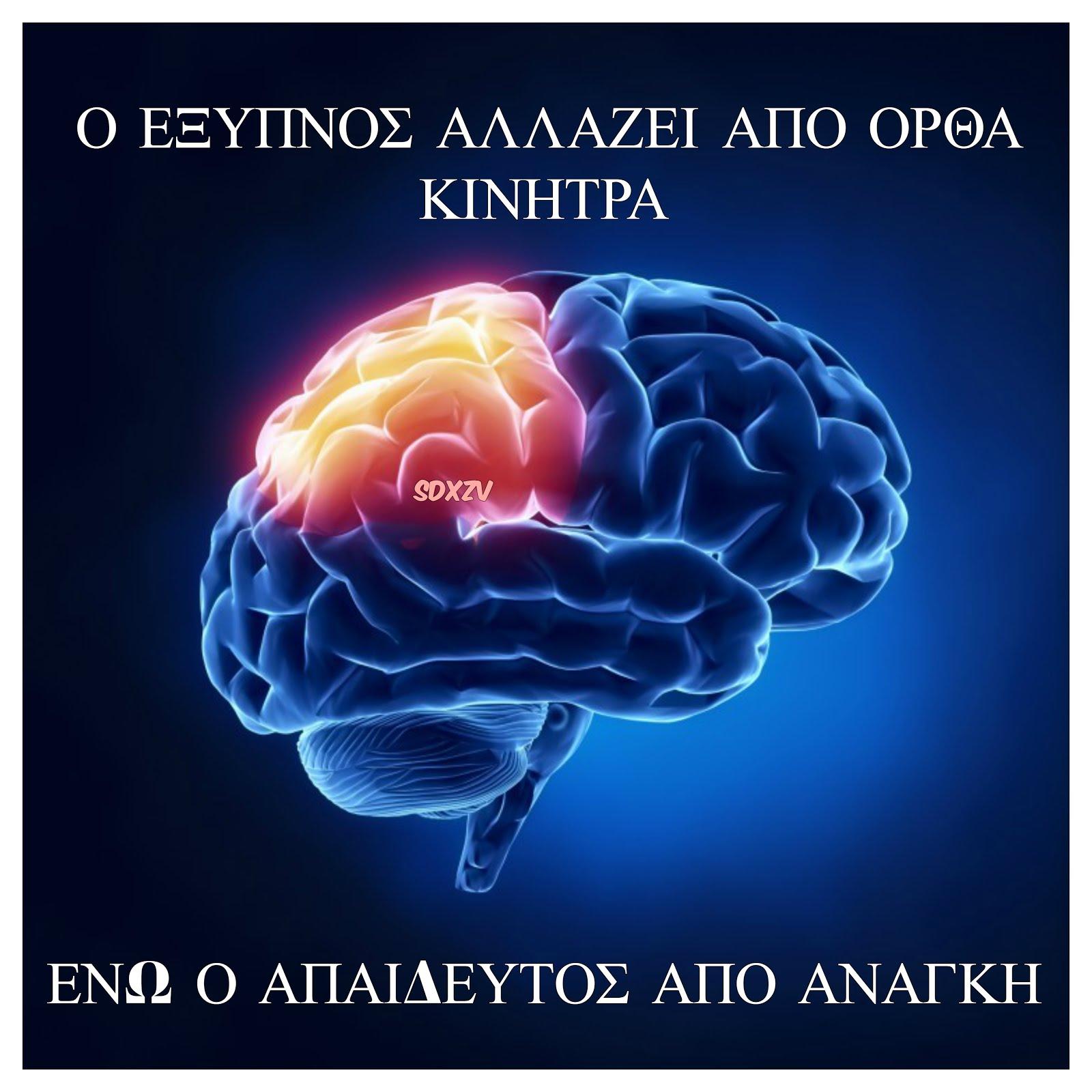 Ο έξυπνος, ποιος είναι ?