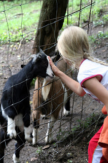 Lucy stroking goats at a petting zoo