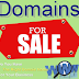 Premium PR Domains for Sale Just 1$ only