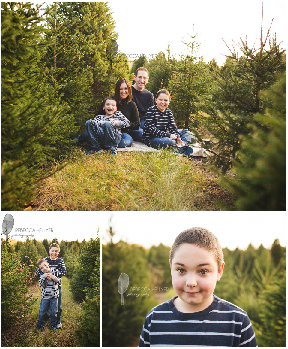 Christmas Tree Farm Mini Sessions | Rebecca Hellyer Photography | Chicago  Family Photographer