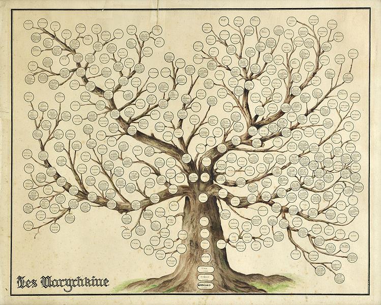 Fancy Family Tree Template Yeniscale