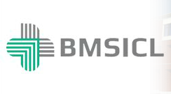 Jobs For Executive In BMSICL 2014