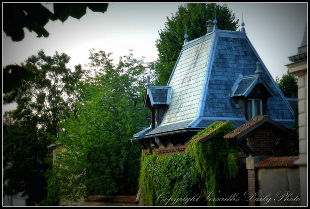 Overgrown vine building Versailles