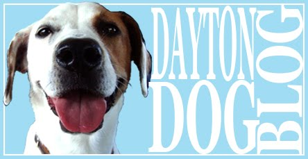 Dayton Dog Blog