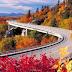 Tổng hợp phong cảnh đẹp về mùa thu