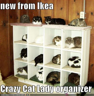 New from Ikea, the crazy cat lady organizer.
