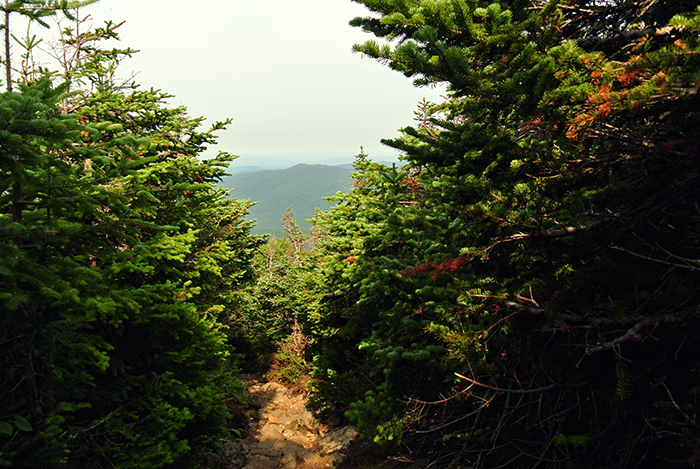Mount Washington Hike: The Jewell Trail | Pennies & Paper Blog