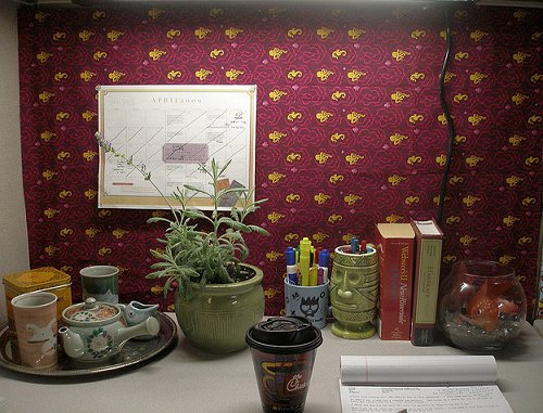 How To Decorate Cubicle Magnificent With Decorating Your Office Cubicle Photos