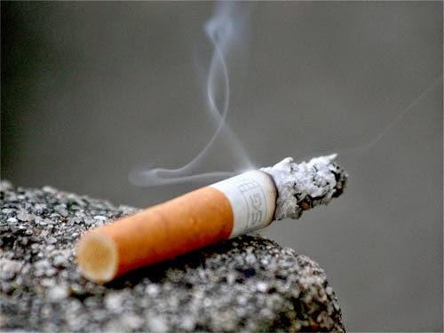احصائية نسبة التدخين في العالم العربي