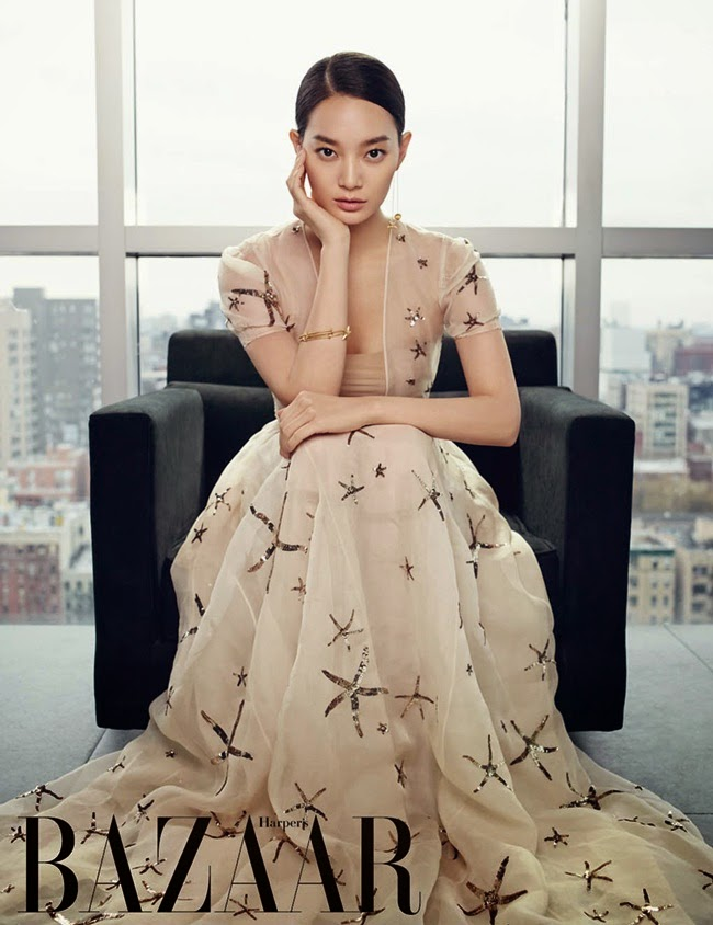 Valentino 2015 SS Starfish Sheer Mesh Dress Editorials