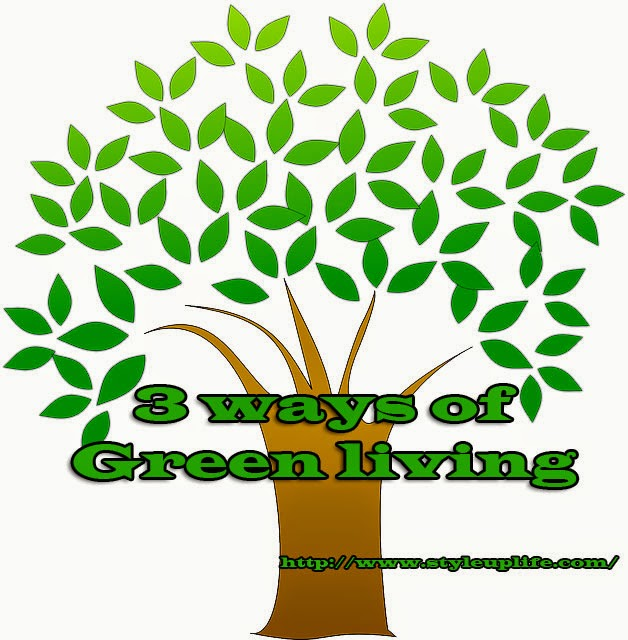 Style Up Your Life 3 Ways Of Green Living