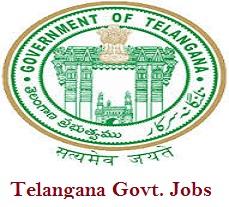 Image result for Telangana Govt Jobs