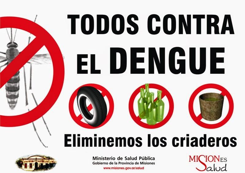Imágenes del mosquito del dengue   MOSQUITOS
