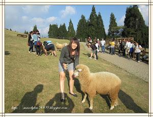 2012 ~ 台湾清境农场