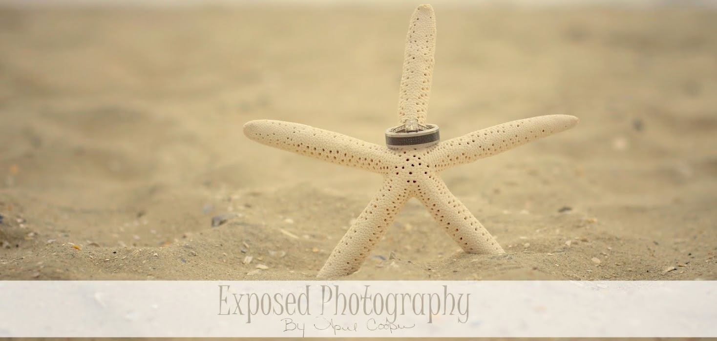 Exposed Photography By April Cooper