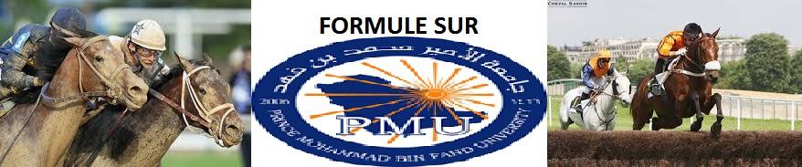FORMULE SUR