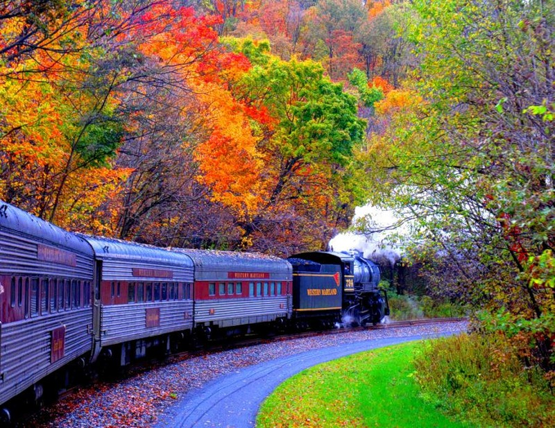 Train and Autumn - Tren en el Otoño