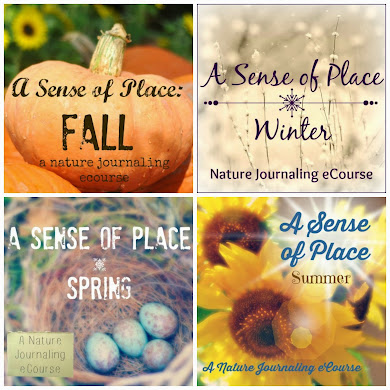 Seasonal Nature Journaling eGuides