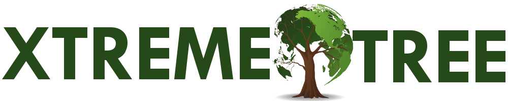 XTreme Tree Inc The Des Moines Leader in Residential and Commercial Tree Care Services