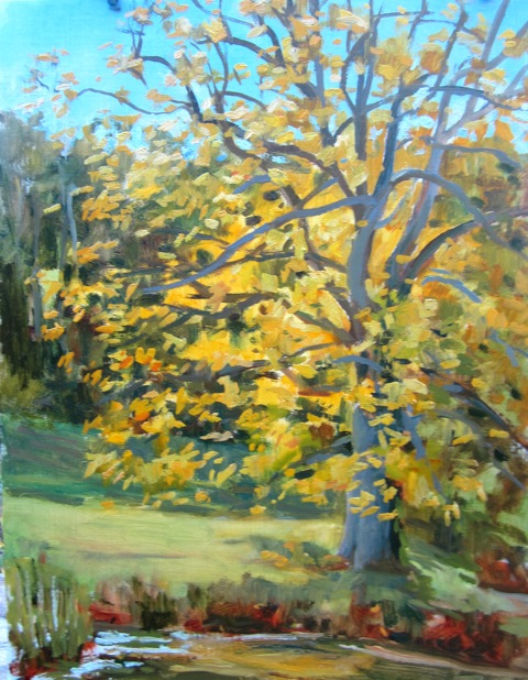 Elissa Gore Golden Beech at Winterthur