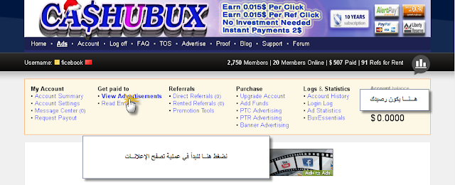 الشركة المصرية الصادقة cashubux ptc5.png
