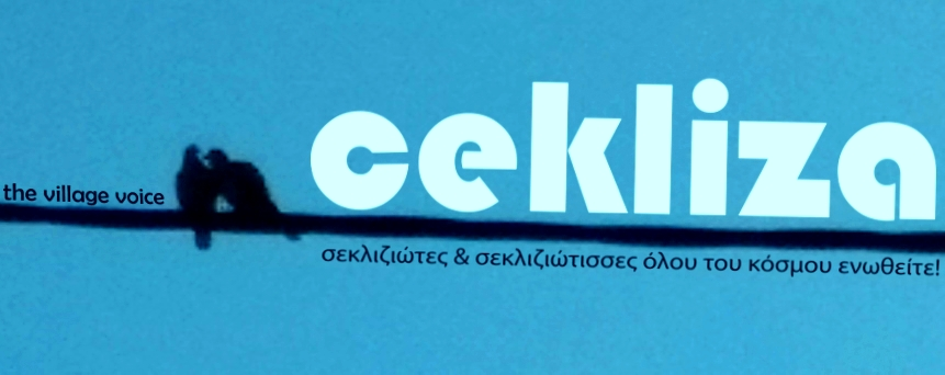 CEkliza