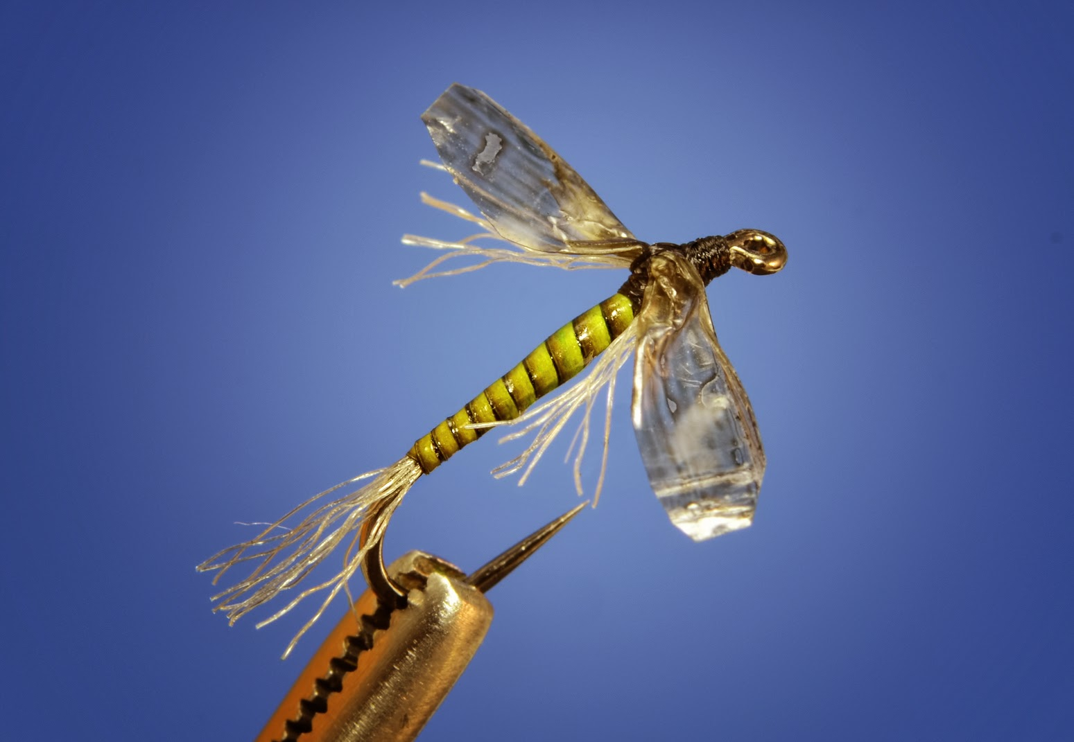 adult midge fly pattern