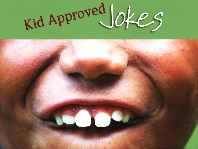 Kid Approved Jokes
