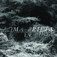 The Top 50 Albums of 2012: 50. Loma Prieta - I.V.