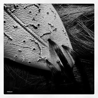 MasauR-detalle-Madawana-Societe-Composite-pelo