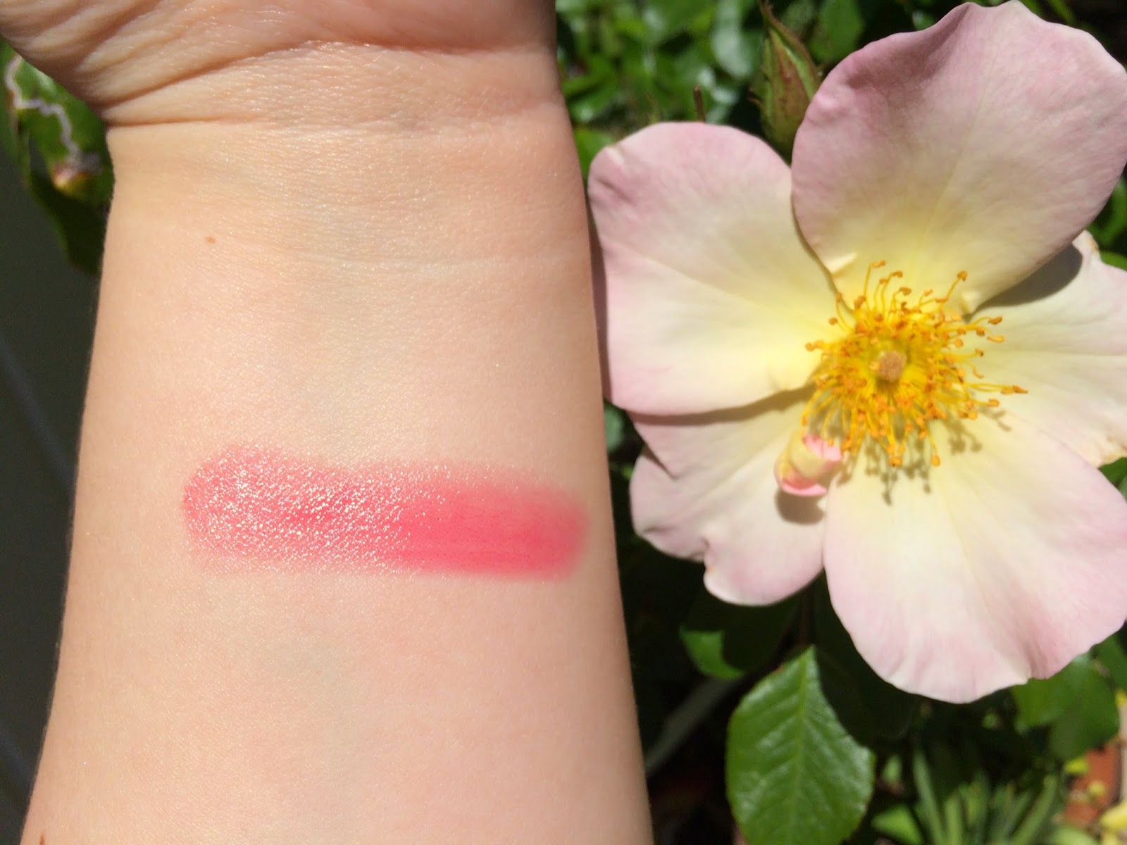 Chantecaille Moroccan Rose swatches + review