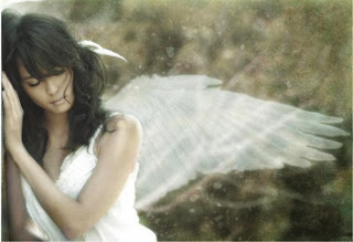 Manual de instrucciones para la instalacion de sus propias alas Lonnely+angel