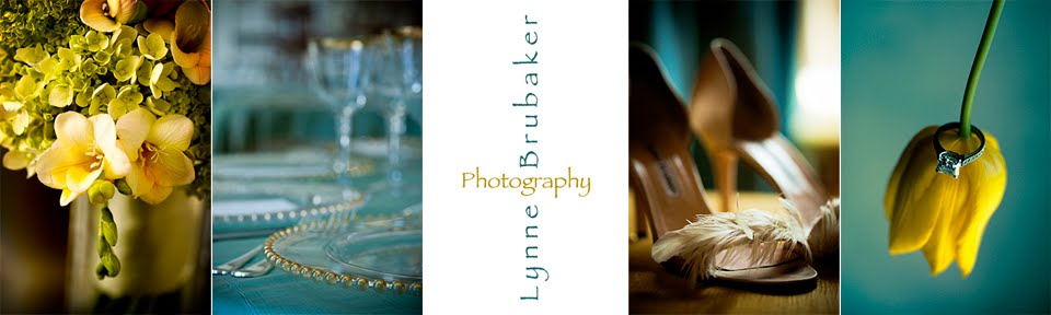 Lynne Brubaker Photography, Inc