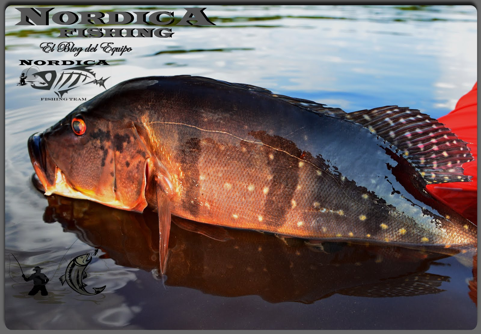 NORDICA FISHING