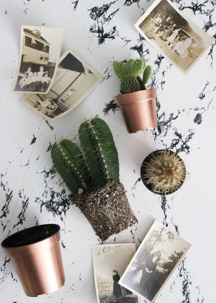 Or Maybe You Just Want To Gift Someone A Little Thank You Plant. Turn Those  Black Plastic Planter Pots Into Something A ...