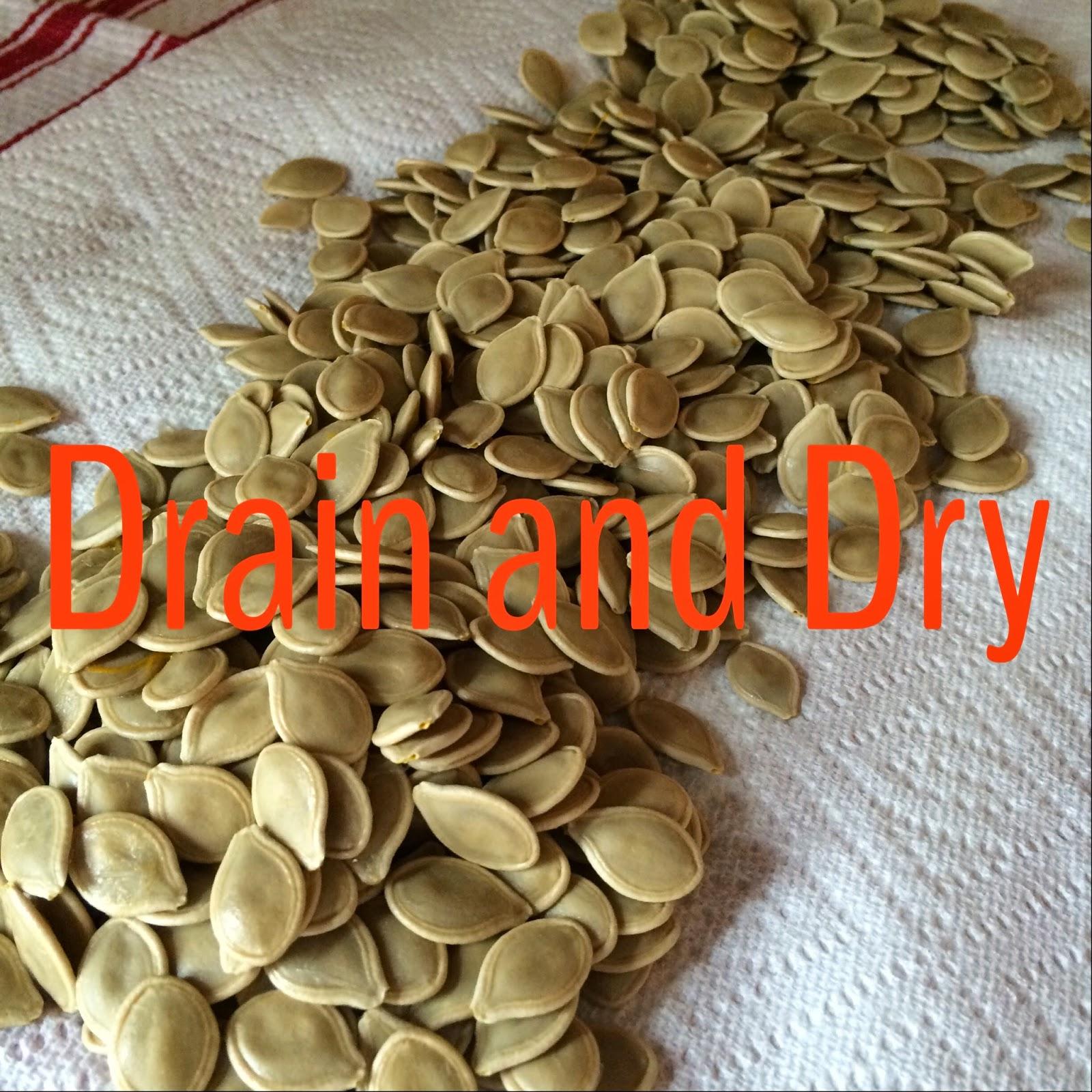 Dill Pumpkin Seeds - Snack Food - LeroyLime