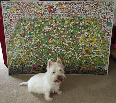 Cute west highland white terrier westie sitting pretty in front of a large green soccer themed puzzle