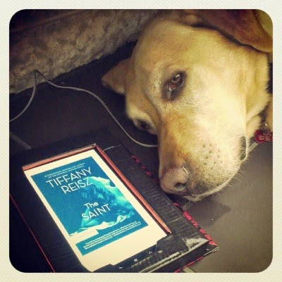 A golden lab--Buster--lies beside an e-reader so only his face is visible. The e-reader's screen shows the cover for The Saint, which features a presumably naked woman lounging on her side with her back to the reader. Only her long hair is truly visible. The entire cover is cast in shades of blue.