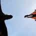 """Primeiro trailer da adaptação de """"Como treinar o seu dragão 2″"""