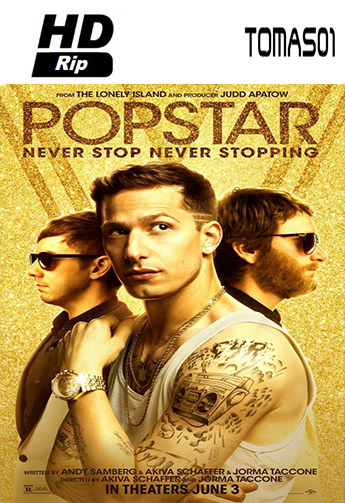 4 - Never Stop Never Stopping (2016) [HDRip/Subtitulado] [Multi/MG]