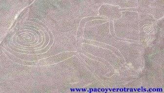 Sobrevolar las figuras y lineas de Nazca en Perú