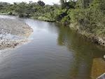 contaminacion del rio rancheria