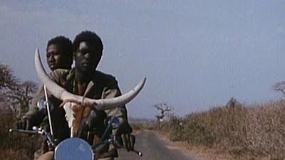 Touki-Bouki (1973), Directed by  Djibril Diop Mambéty