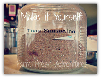 DIY Taco Seasoning