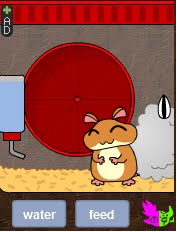 Hamster Nafisah :-D